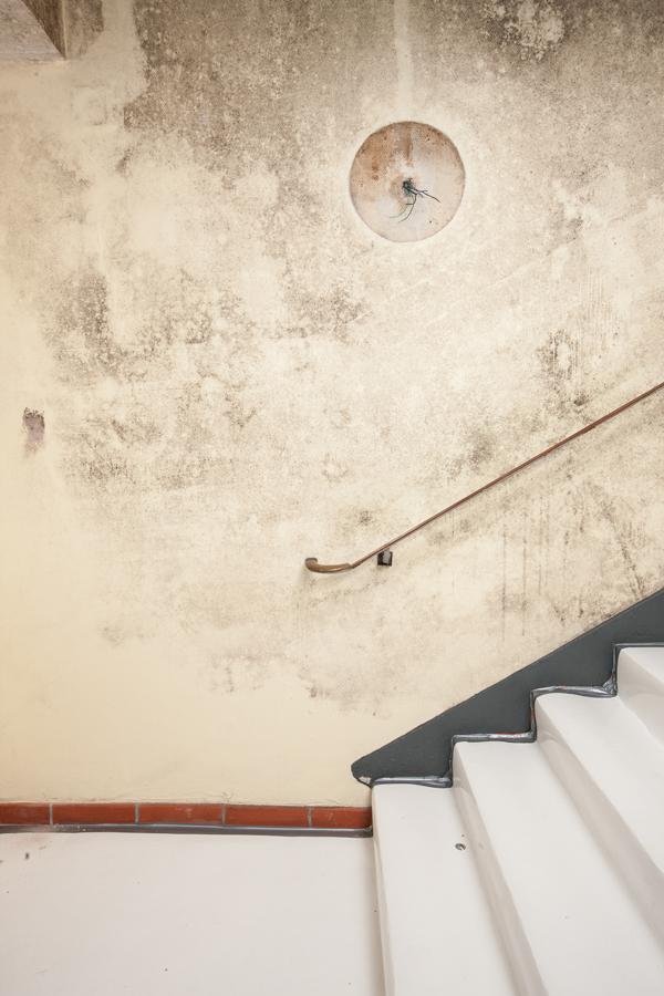 steringer renovieren sanieren bautrocknung verputzen malen steringer aktuelles. Black Bedroom Furniture Sets. Home Design Ideas
